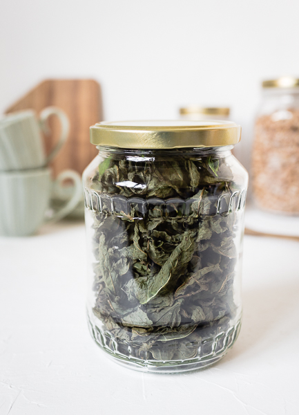 Pfefferminze und Zitronenmelisse im Ofen trocknen - Kräuter für Tee trocknen